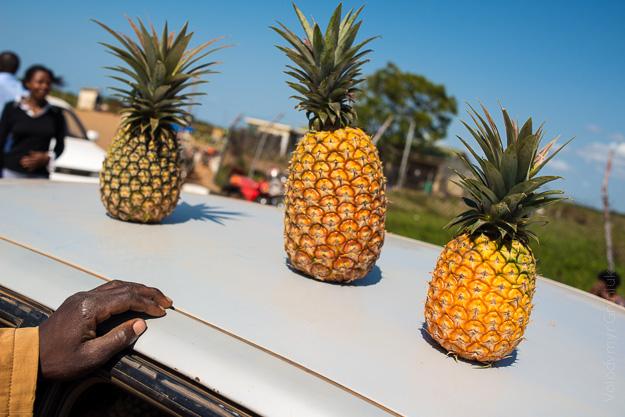 Африка Уганда фрукти ананас