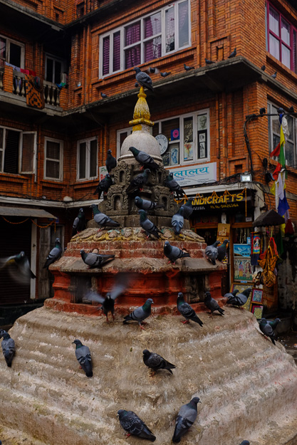Непал, Катманду.