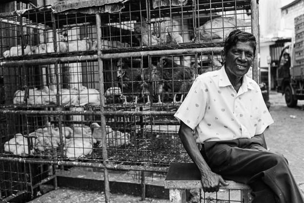 Шрі-Ланка. Коломбо