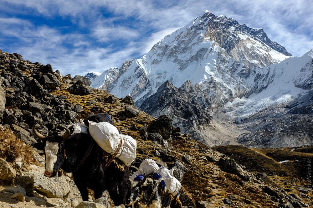 nepal_everest_base_camp-7