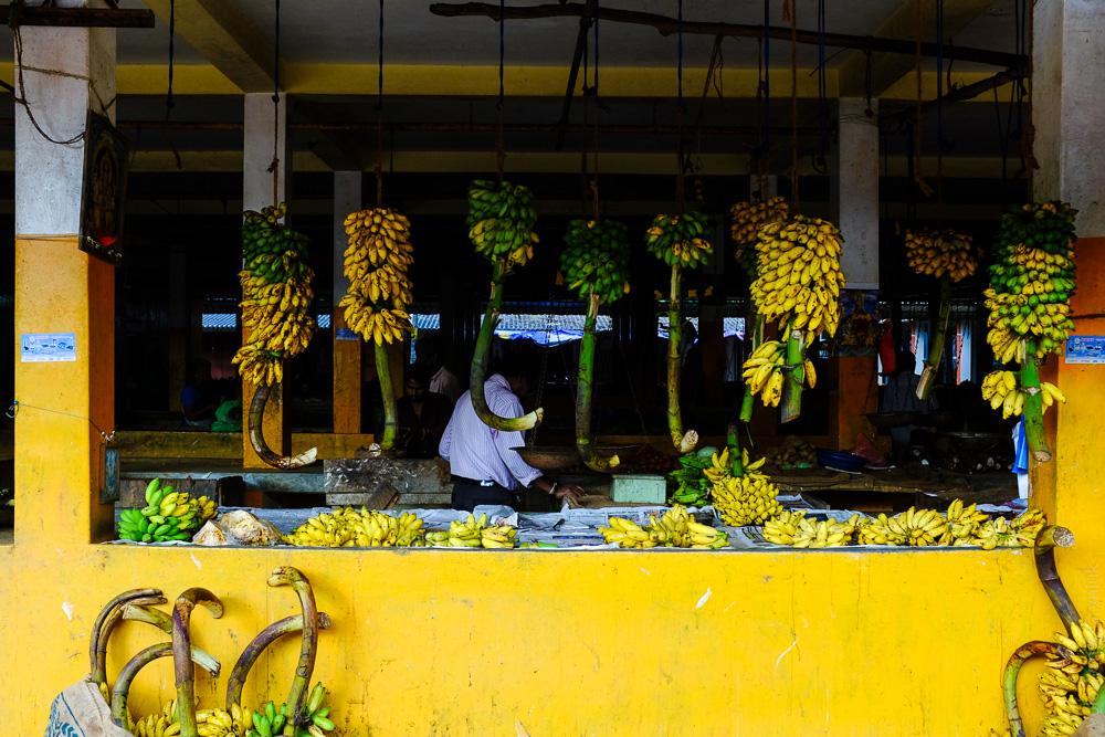 Шрі-Ланка Баттікалоа