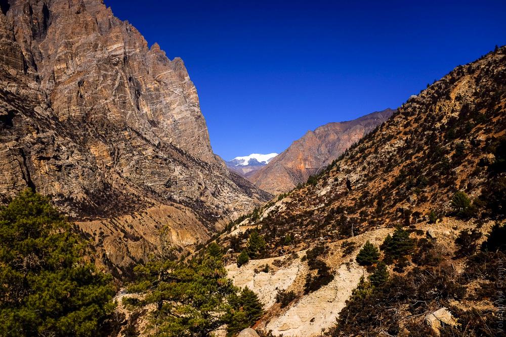Наар Фу Непал