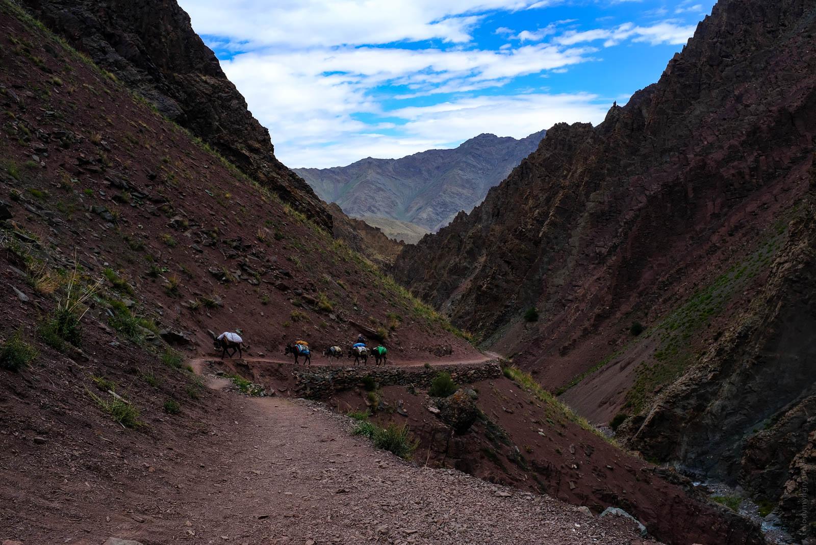 Трек в долині Маркха